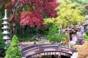 Делаем первые шаги в создании сада